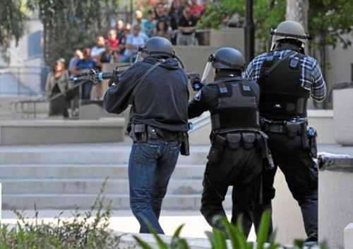 Cuerpos policiales híbridos