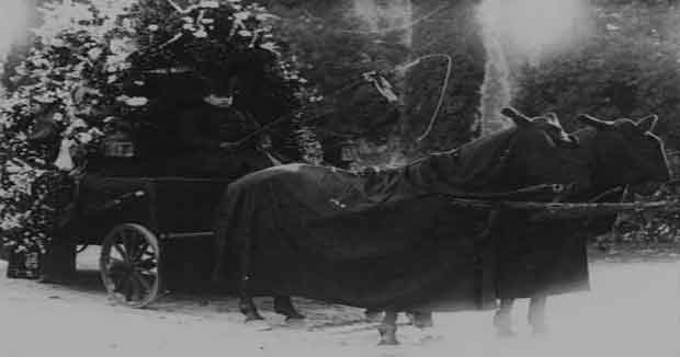 Carro funebre de la epoca