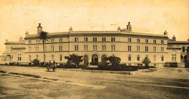 Cómo el árbol del Mora iba hacia el norte y terminó en Cádiz